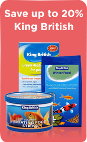 Megamenu_Fish_KingBritish
