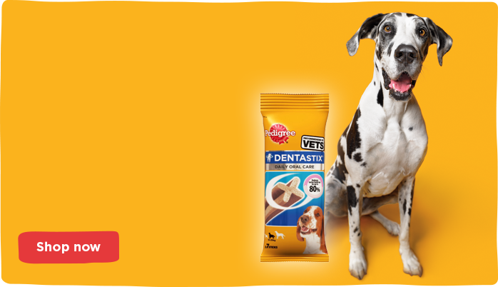 £1 Dentastix. Tough on tartar, kind to your wallet.