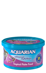 Fish_PNG_AquarianTropical