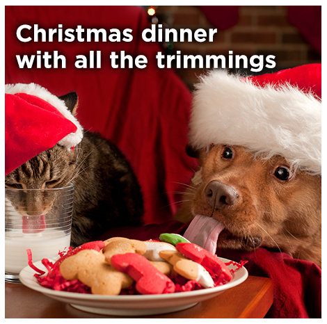 Homepage_6Grid_ChristmasDinner