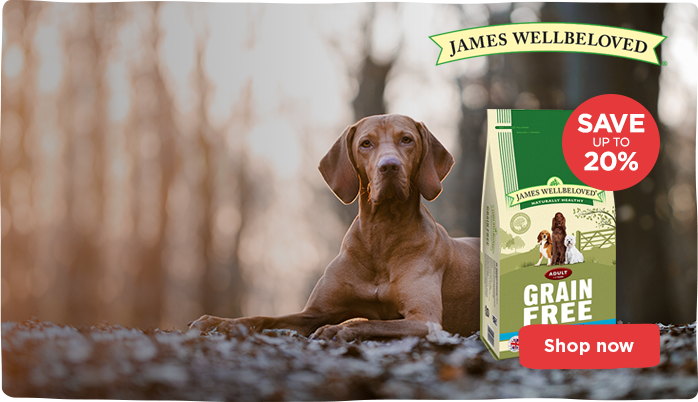 James Wellbeloved Grain Free