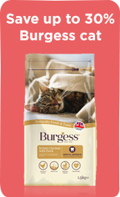 Megamenu_Cat_Burgess
