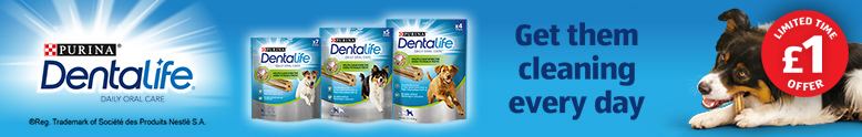 DogDental_CategoryBanner_Dentalife