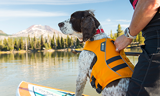 Rufffwear Summer Essentials