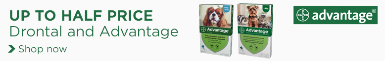 DryDogFood_CategoryBanner_Bayer