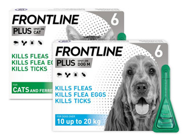 Frontline Plus for your cat and dog