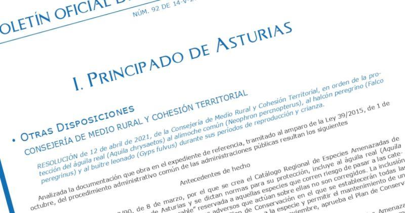 Publicada la nueva norma que regula la escalada en Asturias