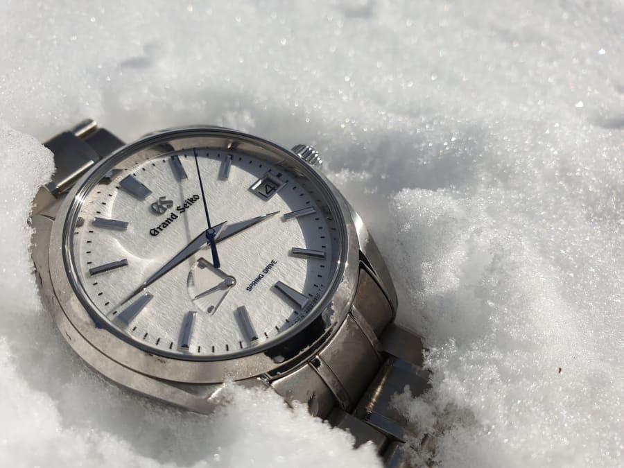 SBGA211 Snowflake in the snow