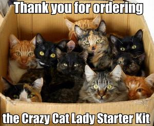 Thank you for ordering the crazy cat lady starter kit