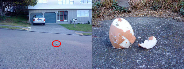 Egg rolling down the road, and the aftermath