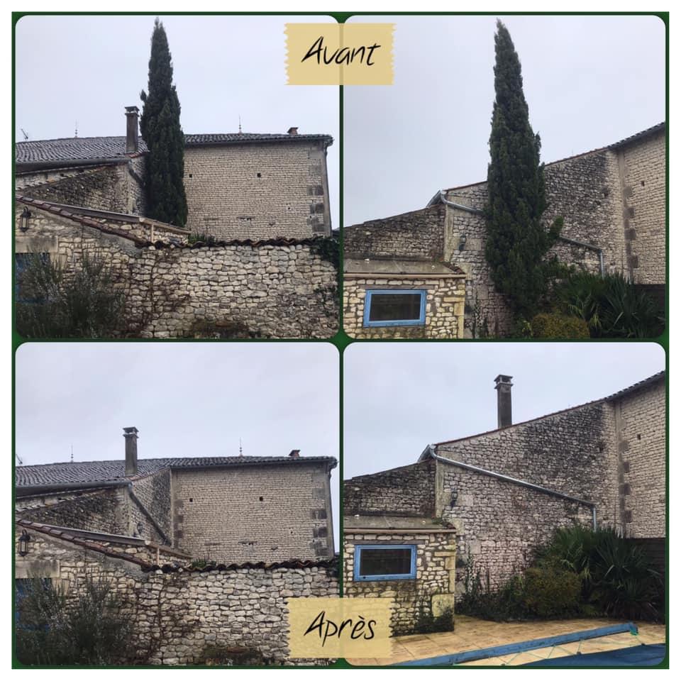Abattage par démontage d'un cyprès - Horizon Arboré à Pons