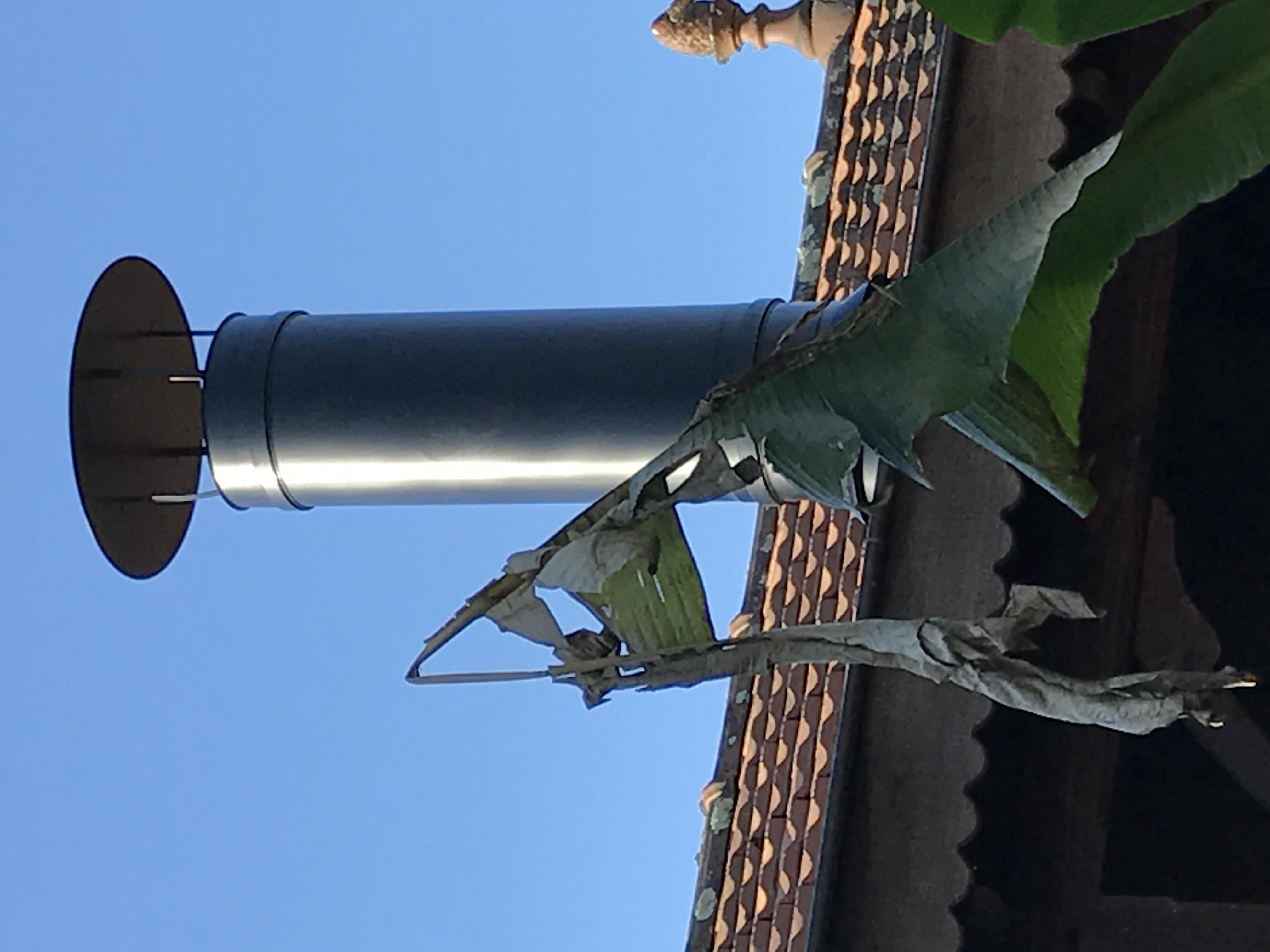 Entretien ramonage en Gironde