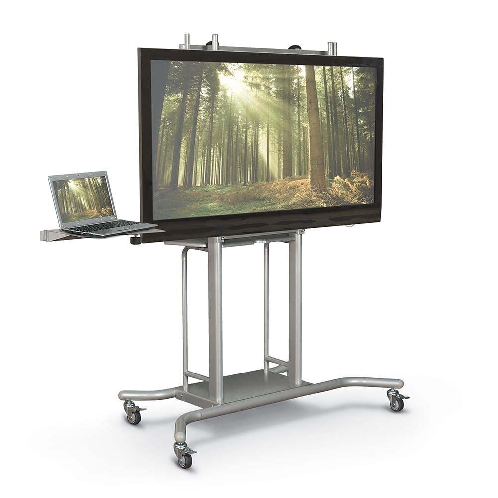 Flat Panel Carts & Mounts