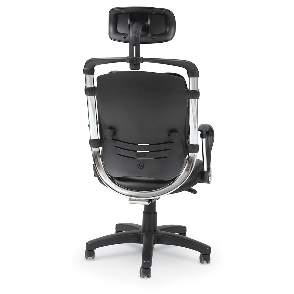 Pleasing Spine Align Ergonomic Office Chair Onthecornerstone Fun Painted Chair Ideas Images Onthecornerstoneorg