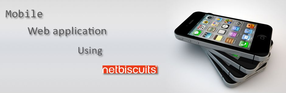 NetBiscuits – Getting Started