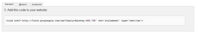 Google Web Font link tag