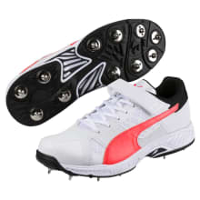 Puma Men's Evospeed Bowling Cricket Spike