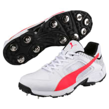 Puma Men's Team Full Spike Cricket Boots