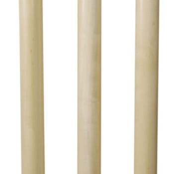 Headstart Springloaded Cricket Stumps