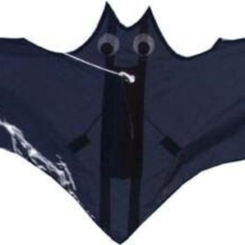 Hi-Fly Single Line Bat Fun Kite