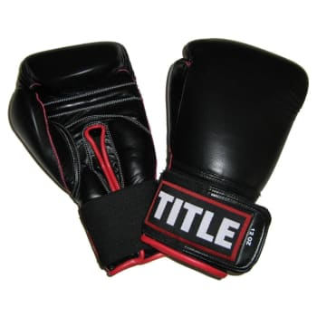 Title Leather Sparring Gloves 10oz