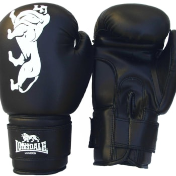 HS Fitness Boxing Glove