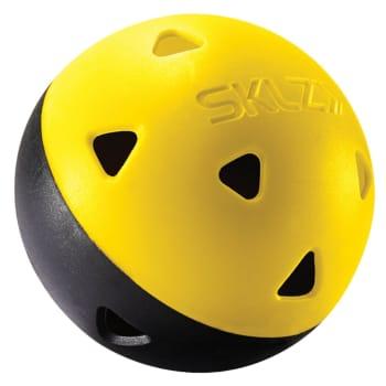 SKLZ Practice 12pc Golf Balls - Find in Store