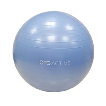 OTG 55cm AB Gym Ball 2020