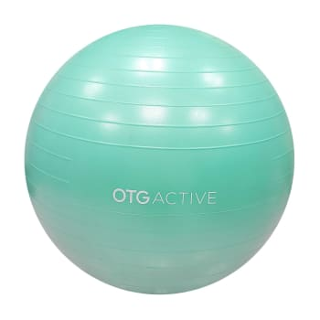 OTG 65cm AB Gym Ball 2020