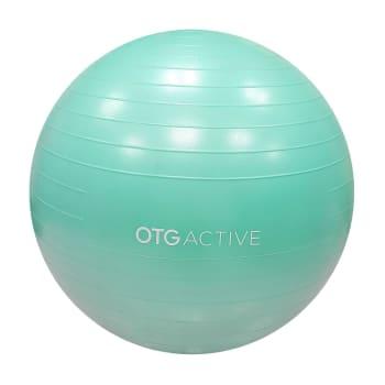 OTG 65cm Anti-Burst Gym Ball