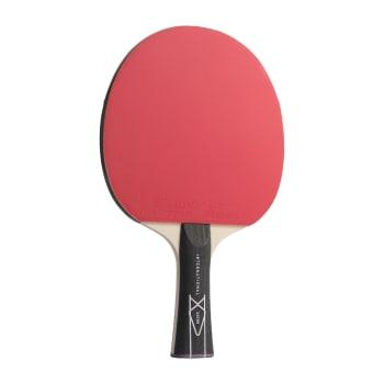 Lion International 1 Star Table Tennis Bat