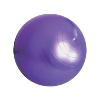 Medalist 55cm Gym Ball - Sold Out Online