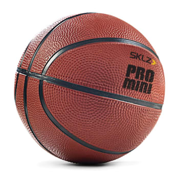 SKLZ Pro Mini Basketball - Out of Stock - Notify Me