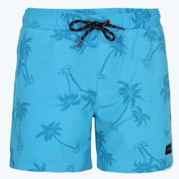 Rip Curl Men's Palm Island Watershort
