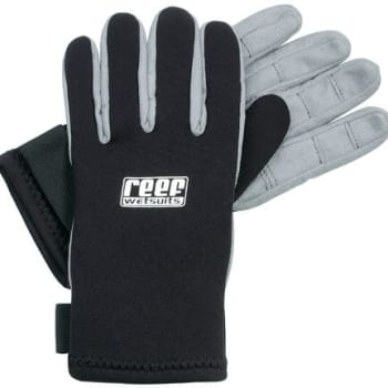 Reef Leather Palm Gloves