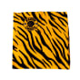 Kaizer Chiefs Multi-use Headwear, product, thumbnail for image variation 2