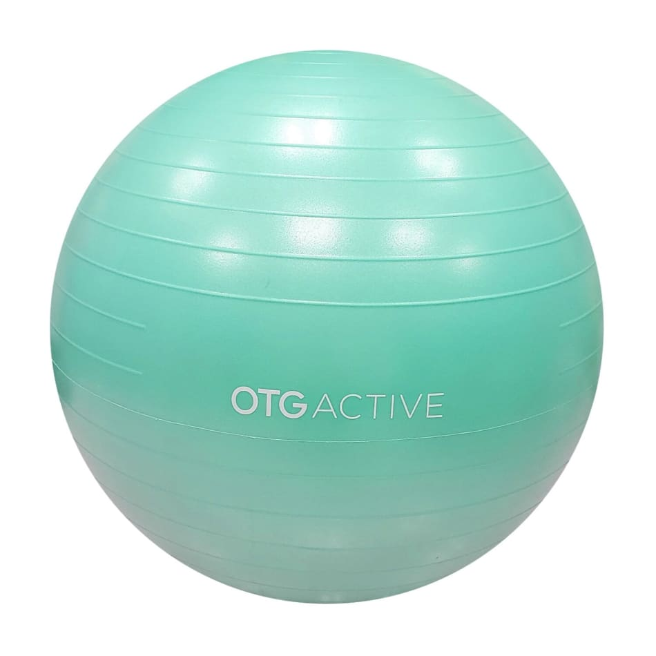 OTG 65cm AB Gym Ball 2020, product, variation 1