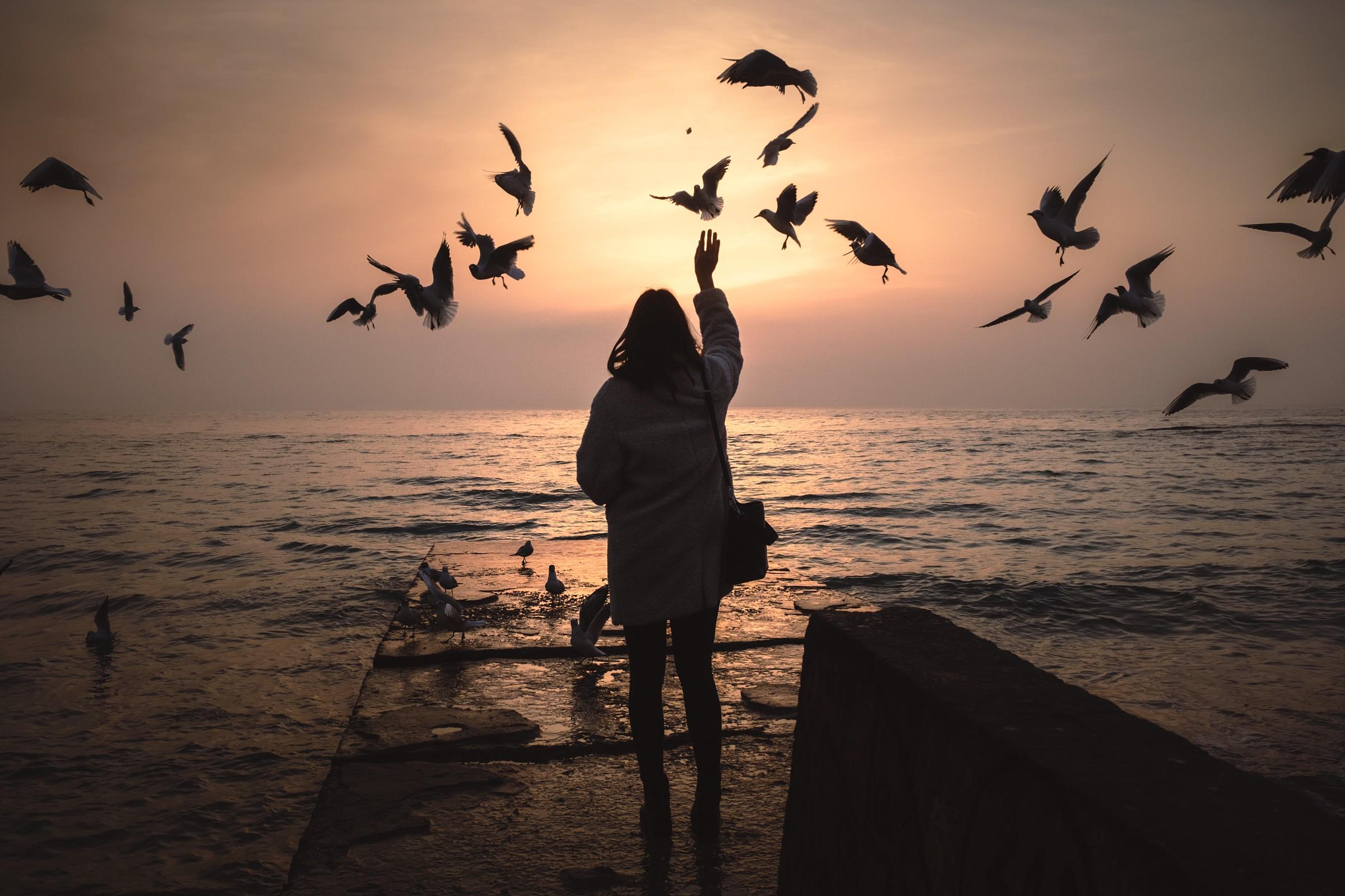 Marina is feeding seagulls at sunrise