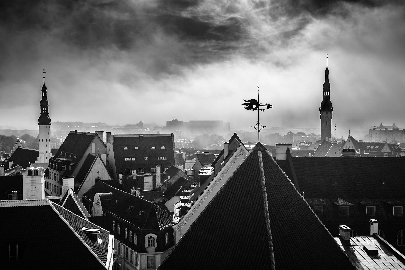 Morning Tallinn
