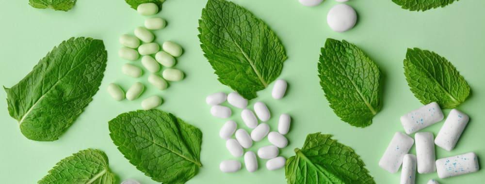 7 Health Benefits of Mint