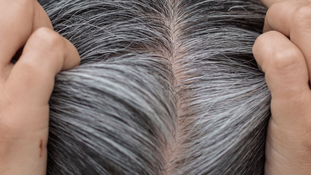 Science Behind Premature Hair Greying
