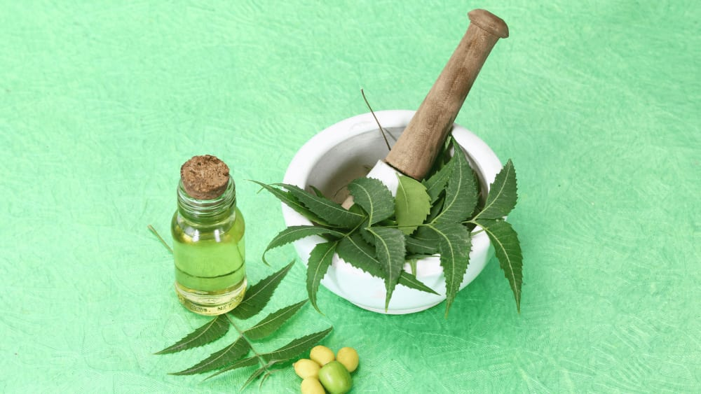 Neem Benefits For Acne