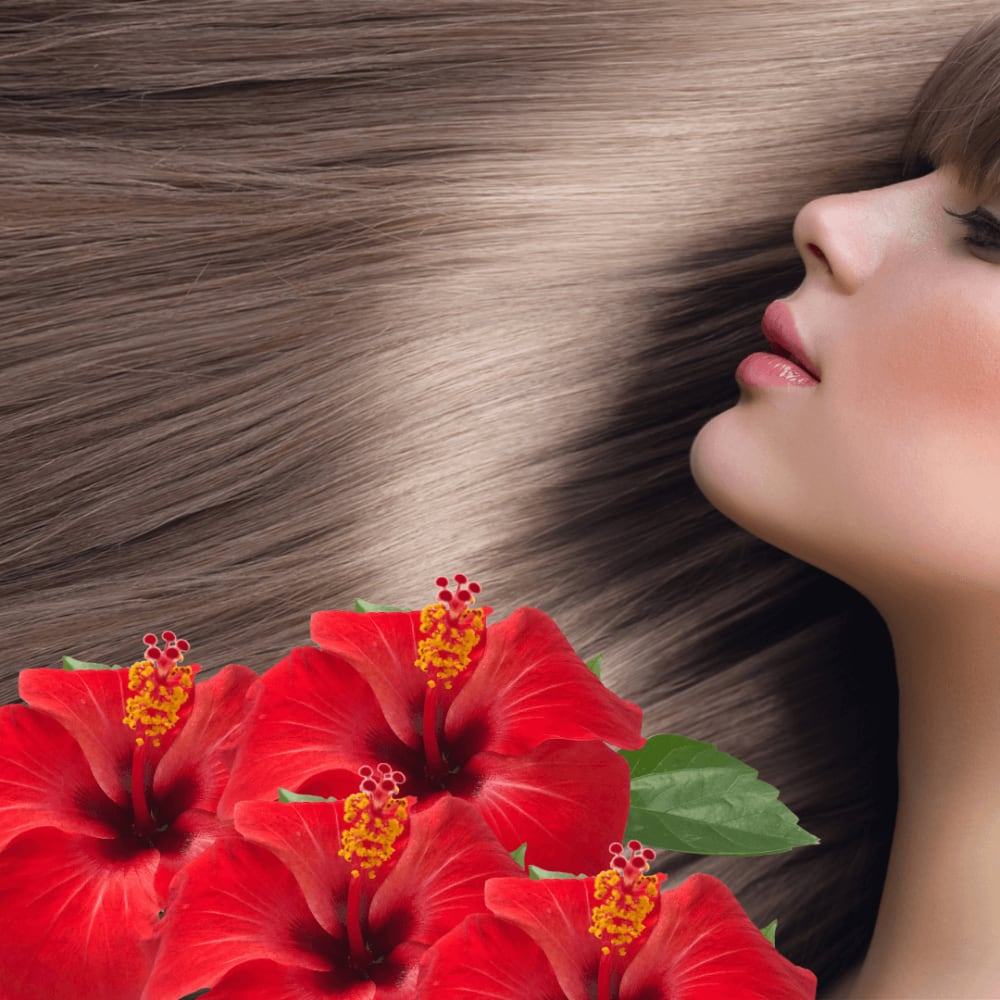 Hibiscus For Hair: Benefits, Uses, Side Effects & More