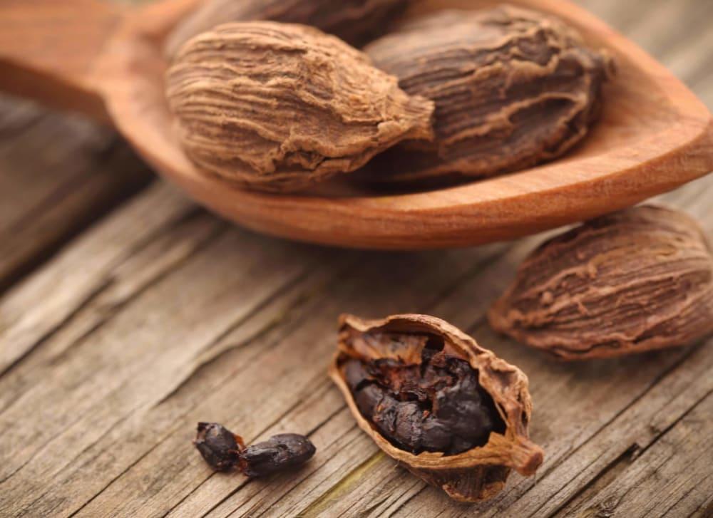 Black Cardamom (Badi Elaichi) Benefits, Uses, Recipes, Price, More
