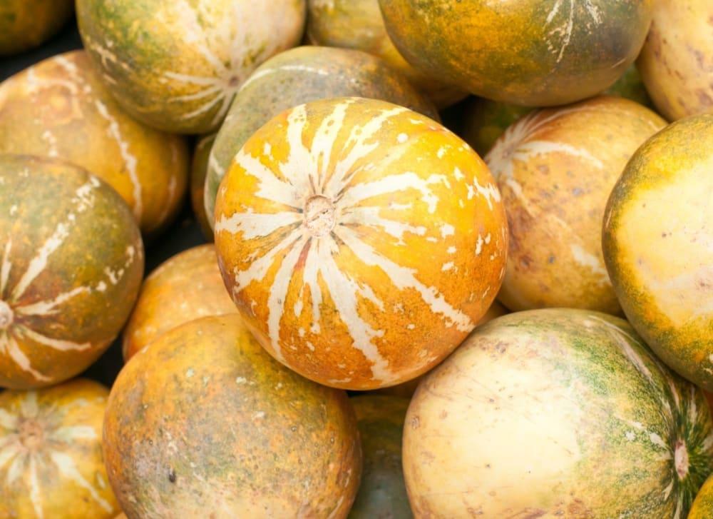 Amazing Muskmelon (Kharbuja) Benefits That You Didn't Know