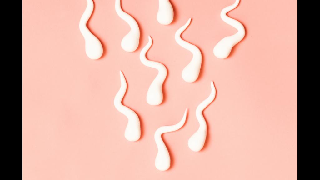 Gokshura benefits men's sperm health