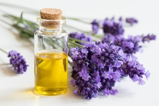 Lavender Oil to block DHT