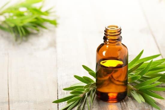 Tea Tree Oil as a DHT blocker