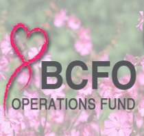 BCFO Operations Fund