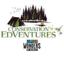Conservation EdVentures at Wonders of Wildlife